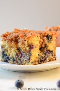 Blueberry Coffeecake Cinnamon Swirl Brown Sugar Crumb (6 of 1)